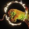 Цирки в Барзасе